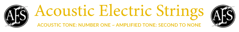 Acoustic Electric Strings